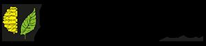 De Biesbosch Gijsbers Groep BV Logo