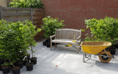patio tuin