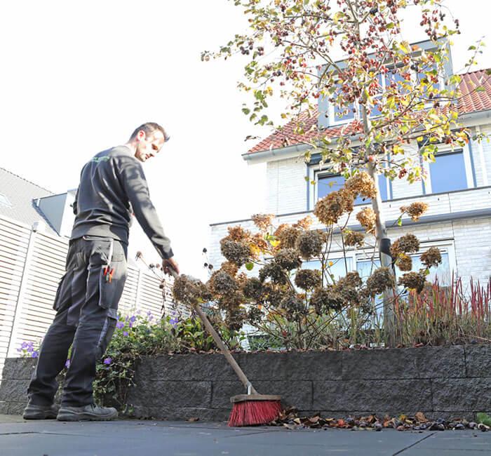 Tuin onderhoud januari en februari